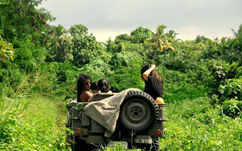 Habarana Safari Day tour from Colombo